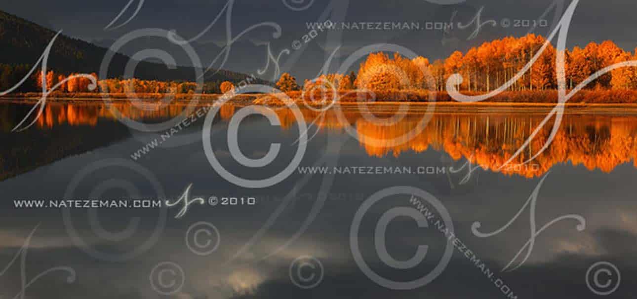Google Immagini: Si Possono Posizionare con la SEO Immagini Watermarked?